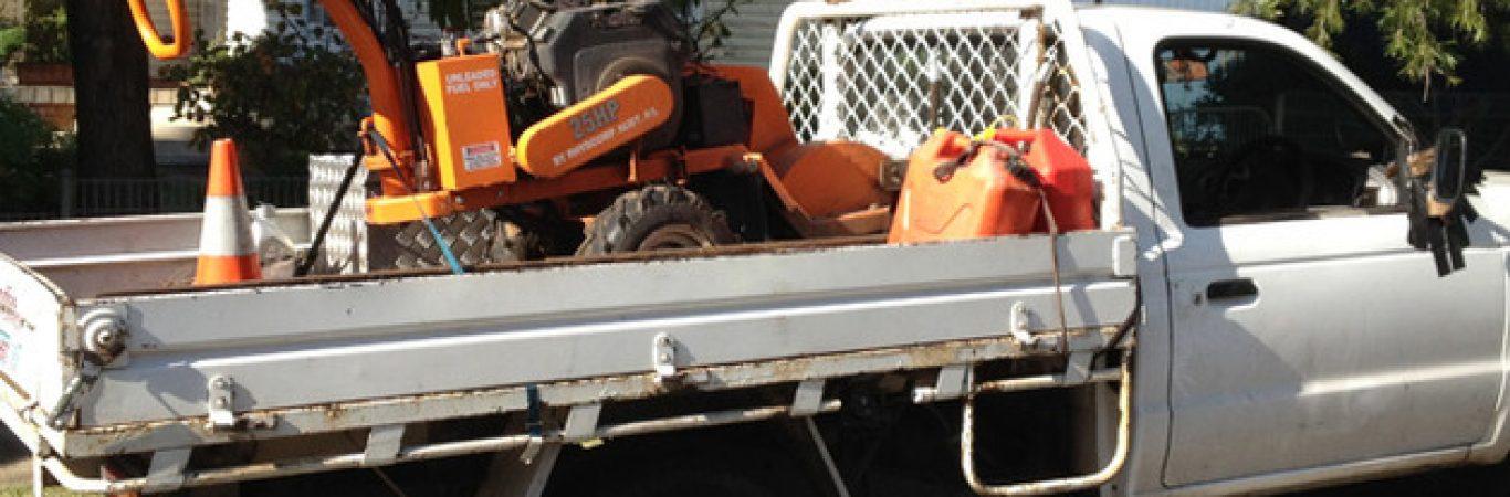 stump grinding newport